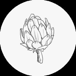07_artichoke